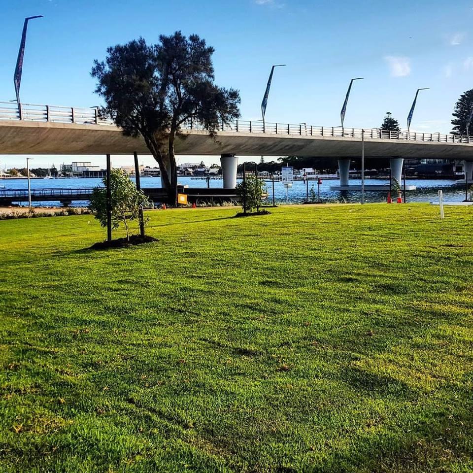 Eureka Kikuyu Perth