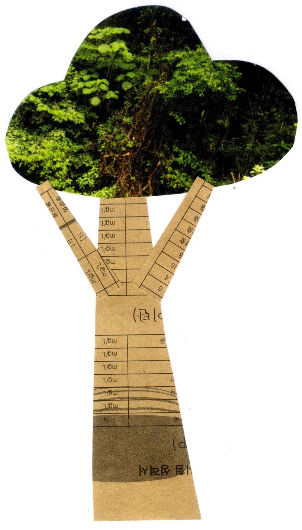 tree2 copy.jpg