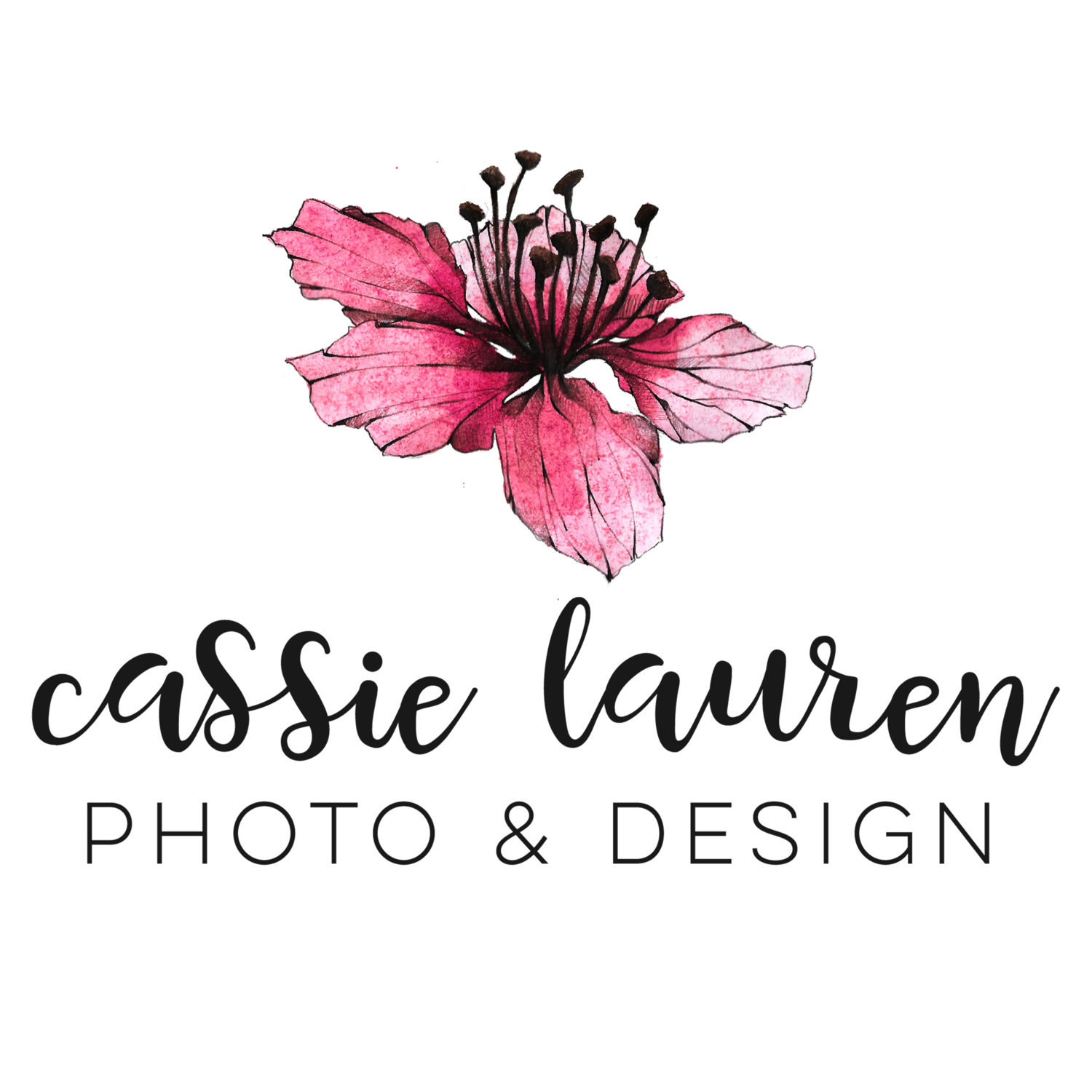 Cassie Lauren Photo + Design | Southern Wisconsin Family and Wedding Photographer