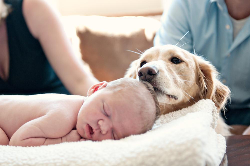 Babies_Natalie_August2011_120.jpg