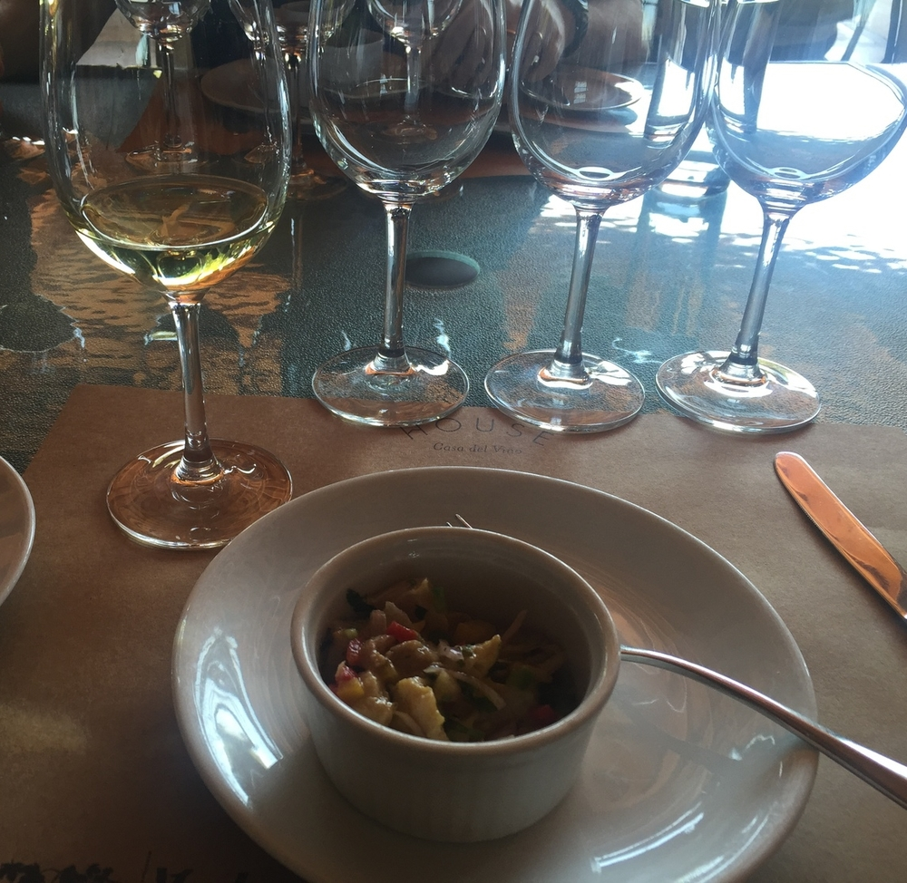 The first course was a ceviche, paired with a delectable white. Check out those glasses all lined up, all for me, all for more wine!