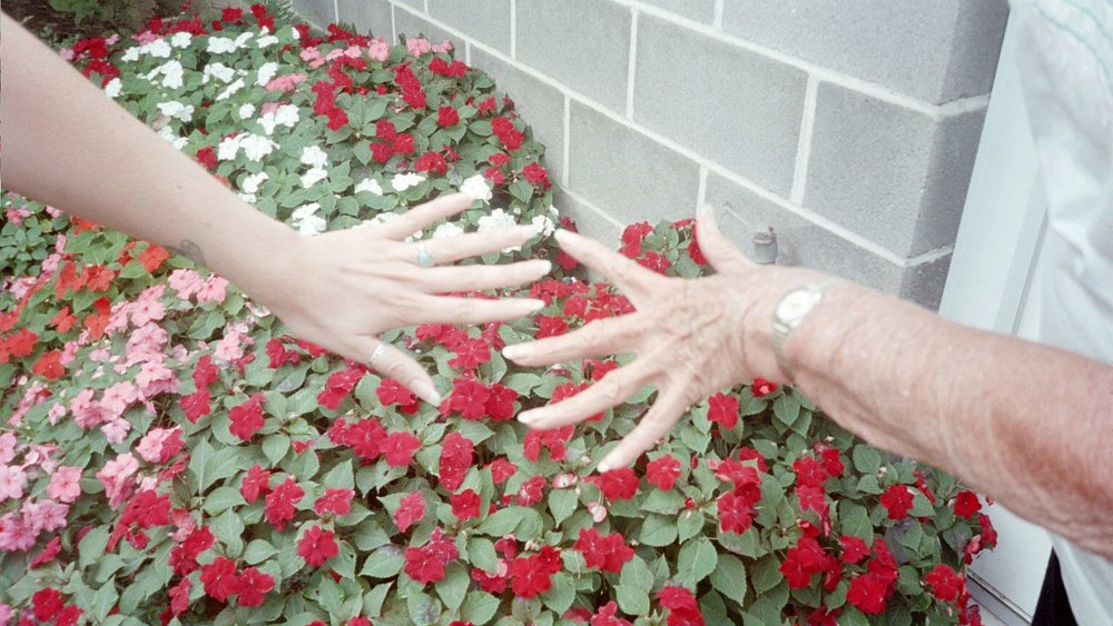 Our hands, circa 2004. Her impatiens in the background. She could grow anything!