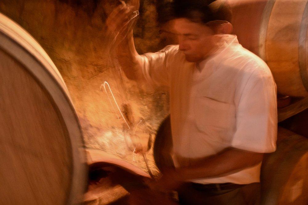 encuentro guadalupe-barrel tasting.jpg