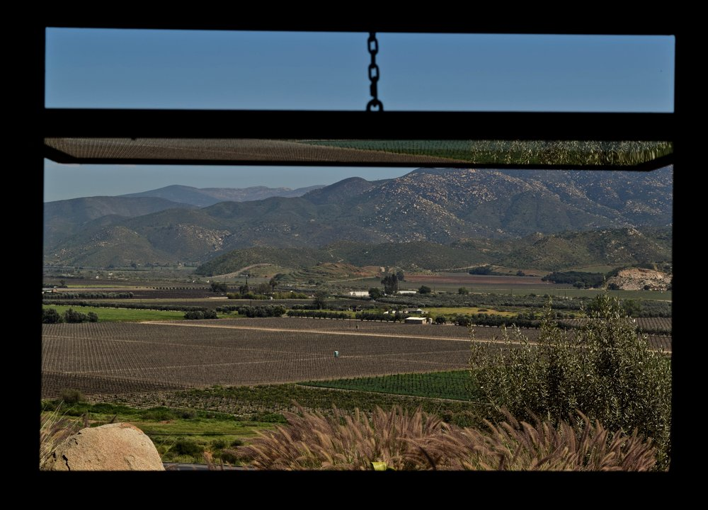 encuentro guadalupe-view from window:tasting room.jpg