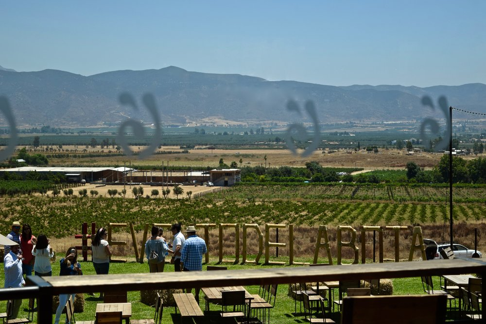 decantos- view to outside from tasting room.jpg