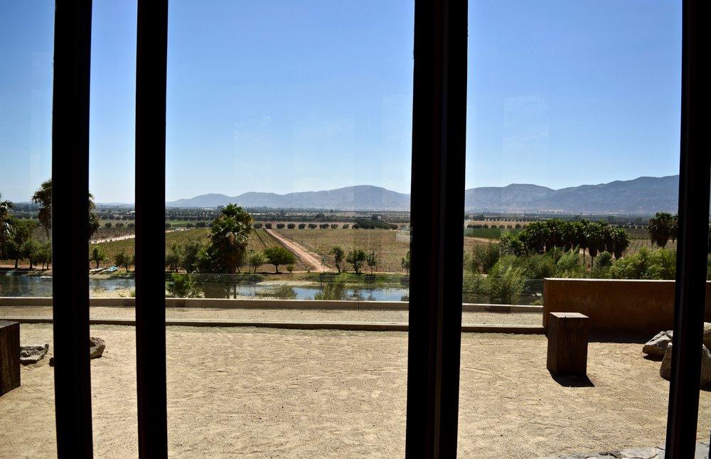 monte xanic- view of lagoon.jpg