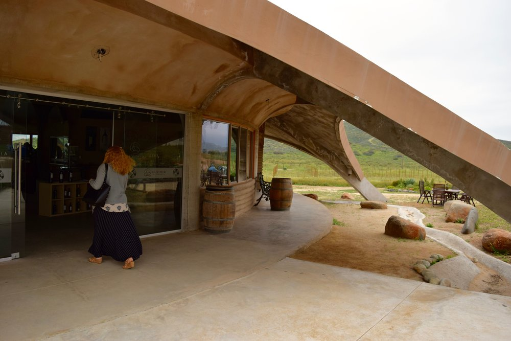 alximia- joanna rushing in to taste wine.jpg