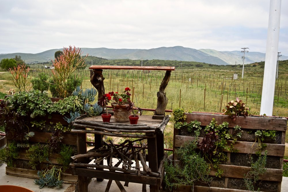 alximia- view from outdoor restaurant.jpg