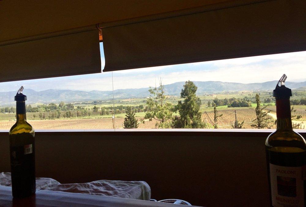 villa montefiori- view of vineyards from tasting room .jpg