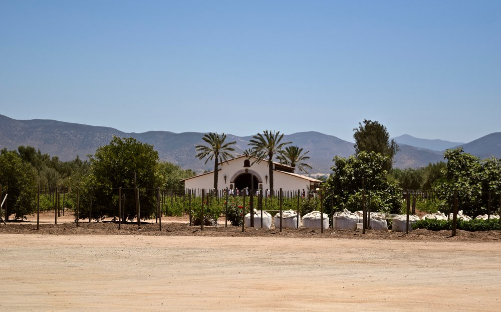 adobe guadalupe-vines: structure.jpg