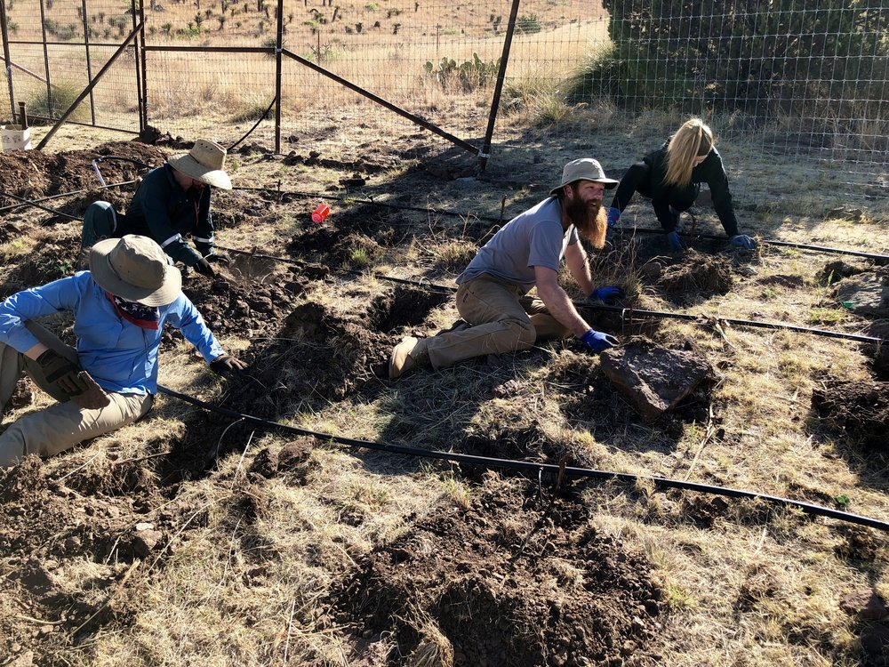 Ricky planting Cabernet Sauvignon vines with some of the volunteers.