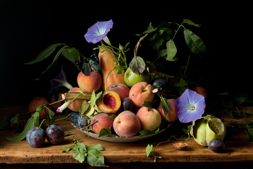 Peaches and Morning Glories, After G.G. © 2010 Paulette Tavormina