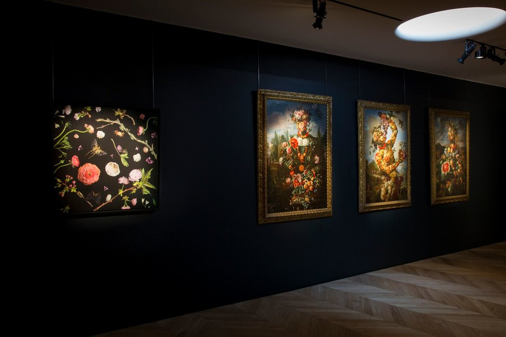 Colnaghi  Seizing Beauty  Exhibition - Botanicals Series