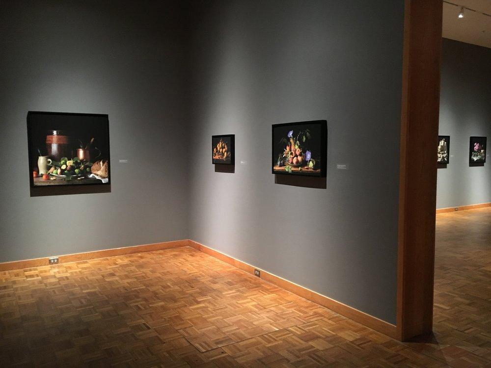 Solo Show Snite Museum, Notre Dame