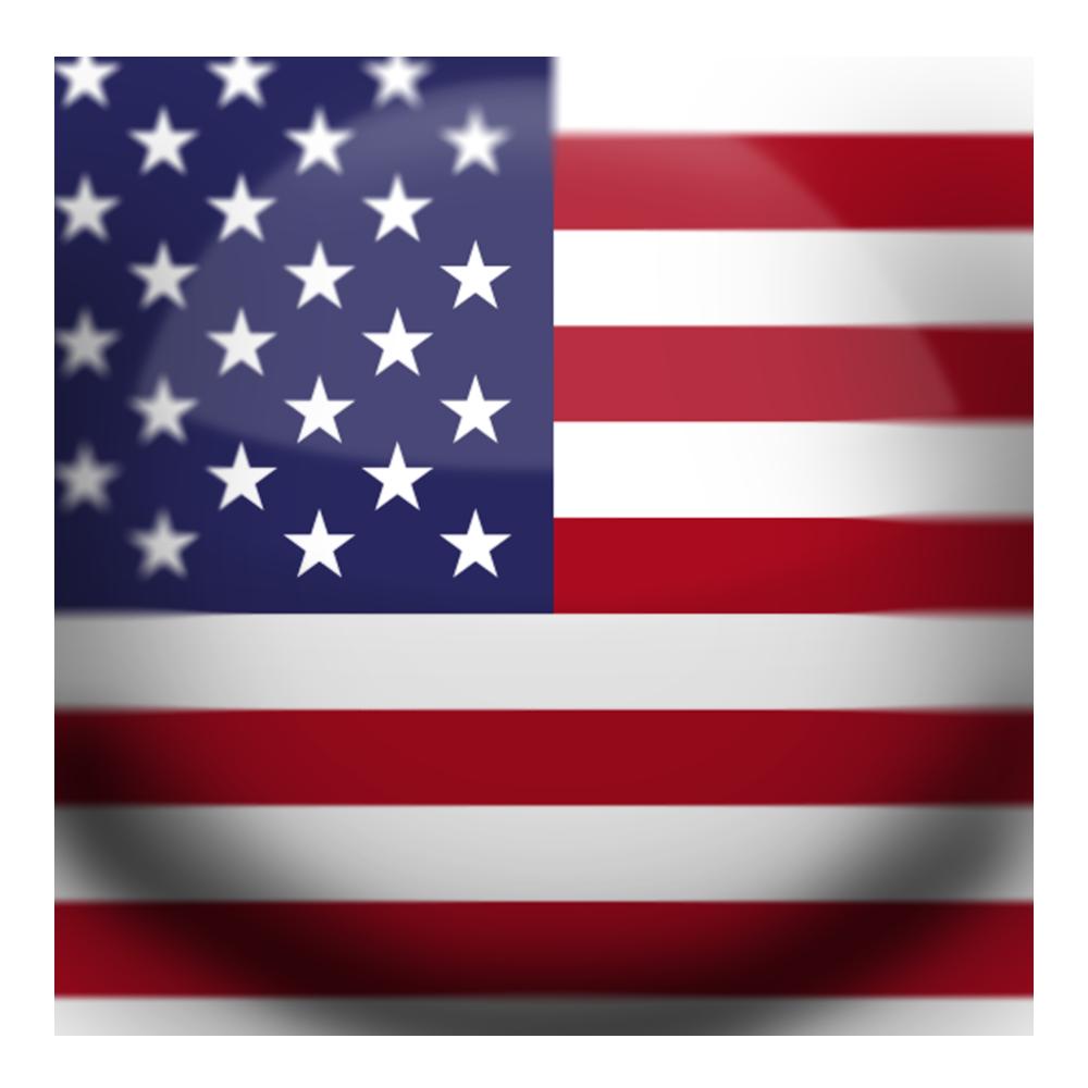USA Flag Button.png