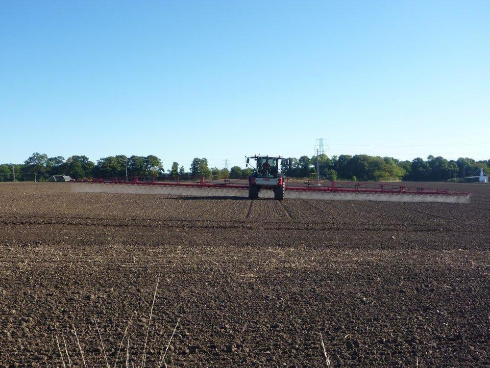 Farm 2012 043.jpg
