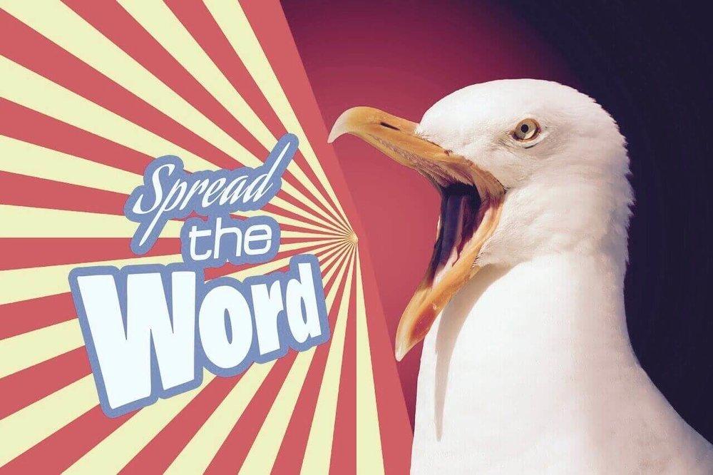 Möwe 'spread the word'