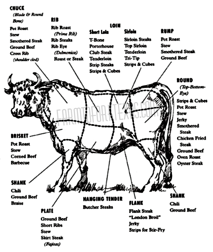 beef cuts diagram  u2014 farm to fork