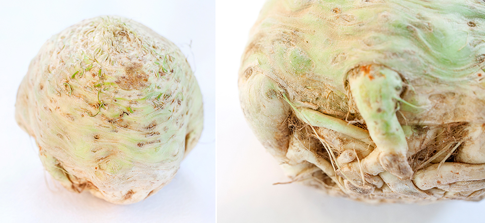 celeriac organic vegetable.jpg