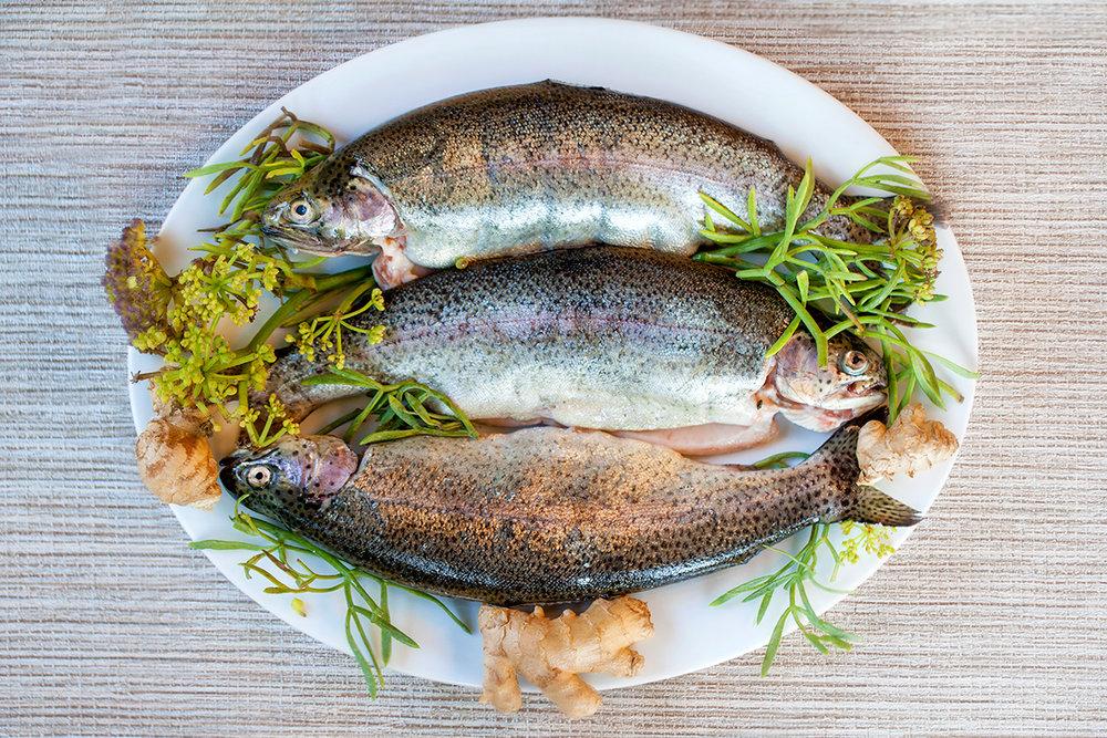 organic trout.jpg