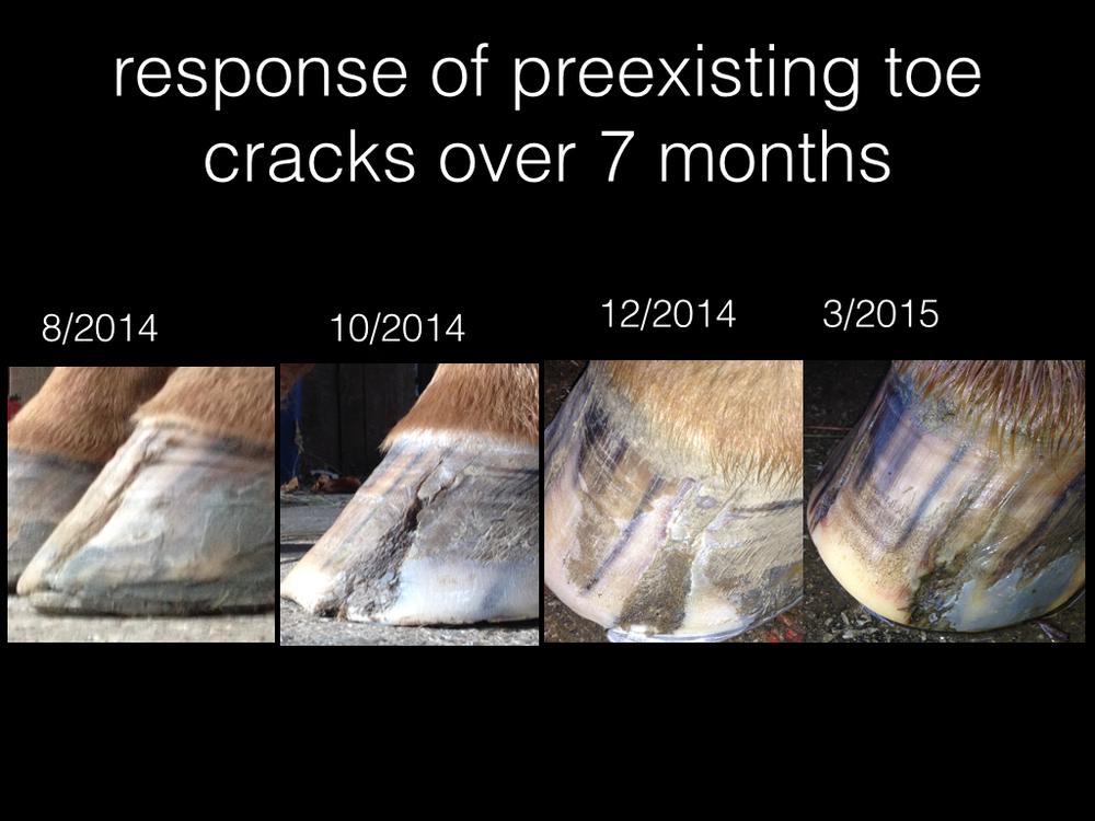 toe cracks.001.jpg