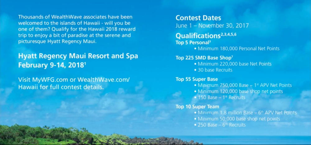 WFG Hawaii Qualifications Flyer .png