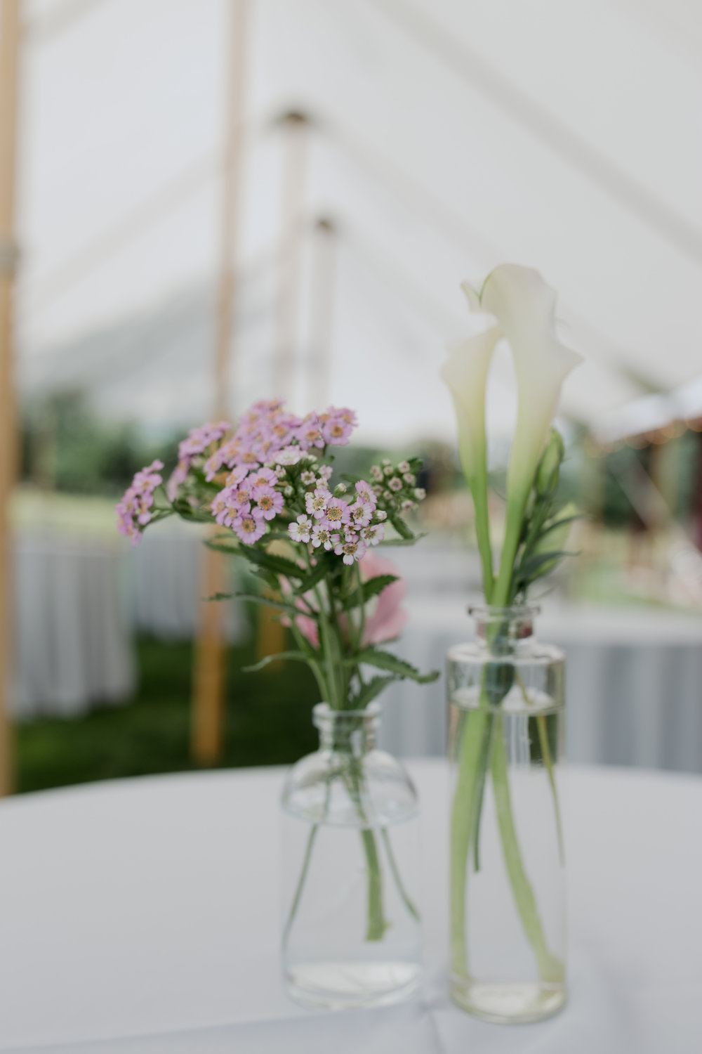 Watershed_Floral_Maine_Farm_Wedding-34.jpg