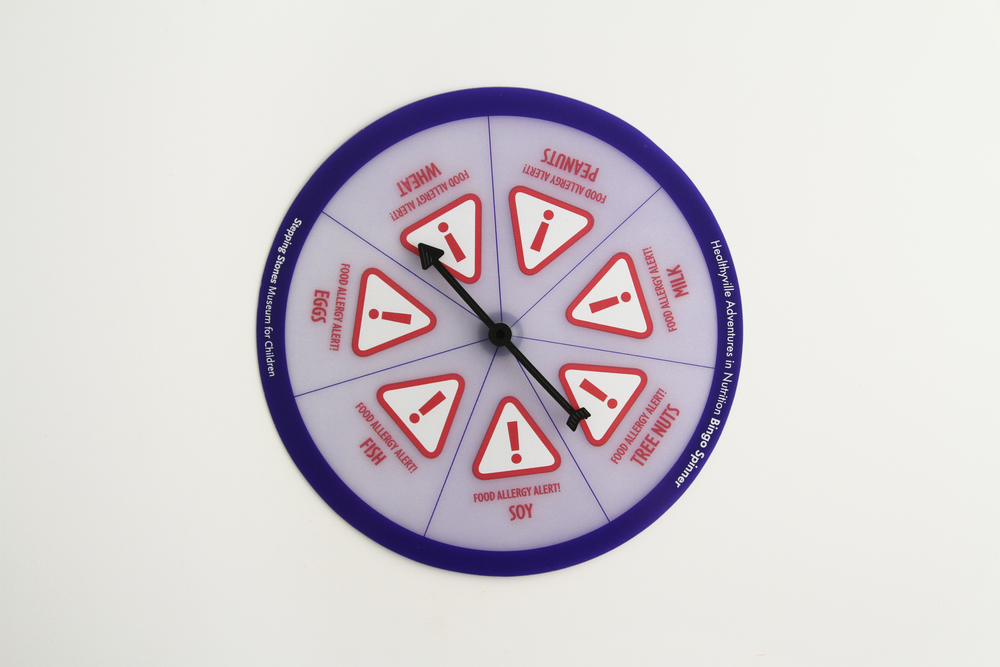 Food Allergy Spinner Learning Tool - Scr 3/0