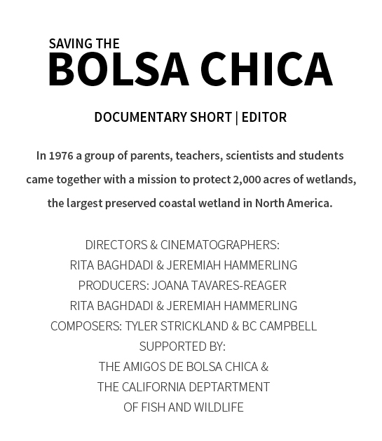 BOLSA CHICA.jpg