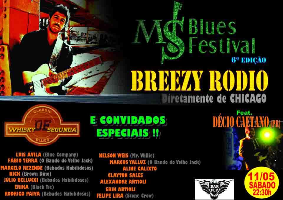 Brazilian Tour 2013