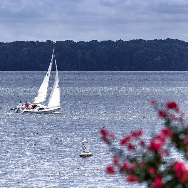 Not ready to let go of summer yet!! #sailing⛵️ #visitlakenorman #lakenorman #outdoorphotographer #outdooradventurephotos