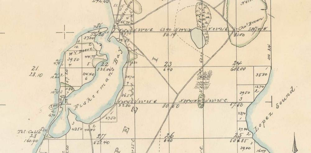 1874 Survey map (detail)