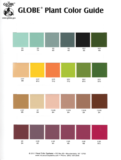 THE GLOBE PLANT COLOR GUIDE
