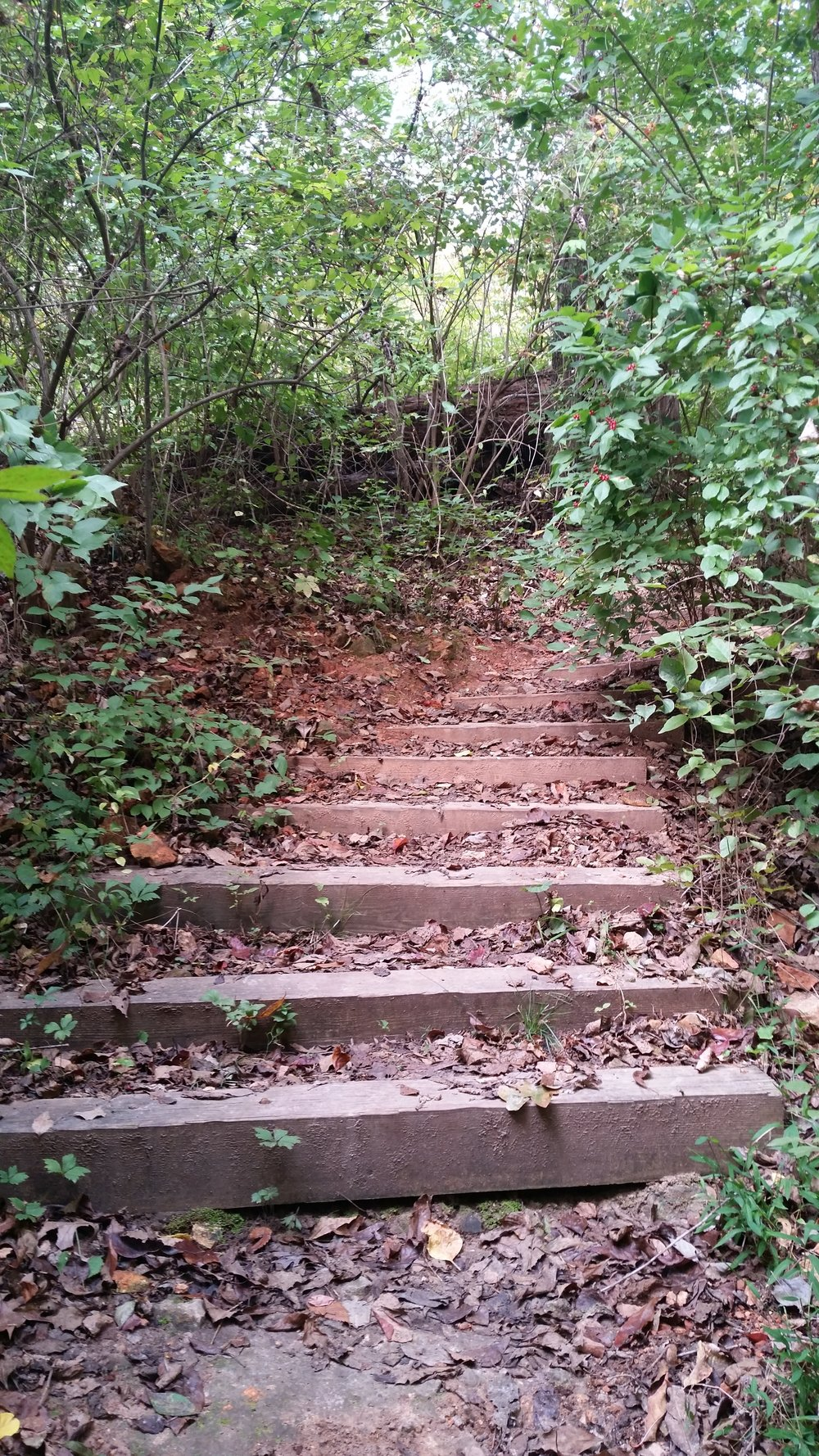 A stairway on the path...an alternate route which is more difficult, but saves a lot of time