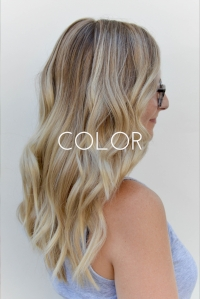 Color Portfolio