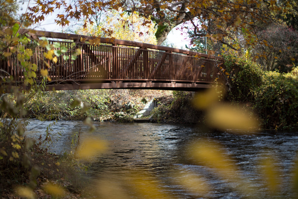 Bidwell Park Video Chico California.jpg