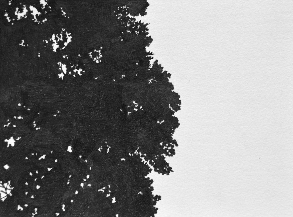 "From Below, Pt. 1 , Ink Pen on Paper, 6 x 8"", 2018"