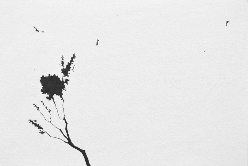 """Falling , Ink Pen on Paper, 6 x 9"""", 2018"""