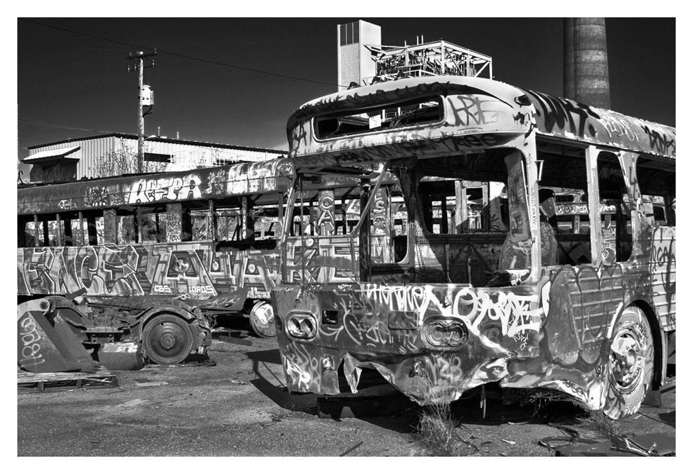 busesframe.jpg