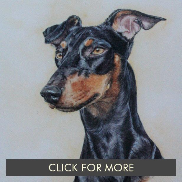DogsPage02_0002_Alfie.JPG.jpg