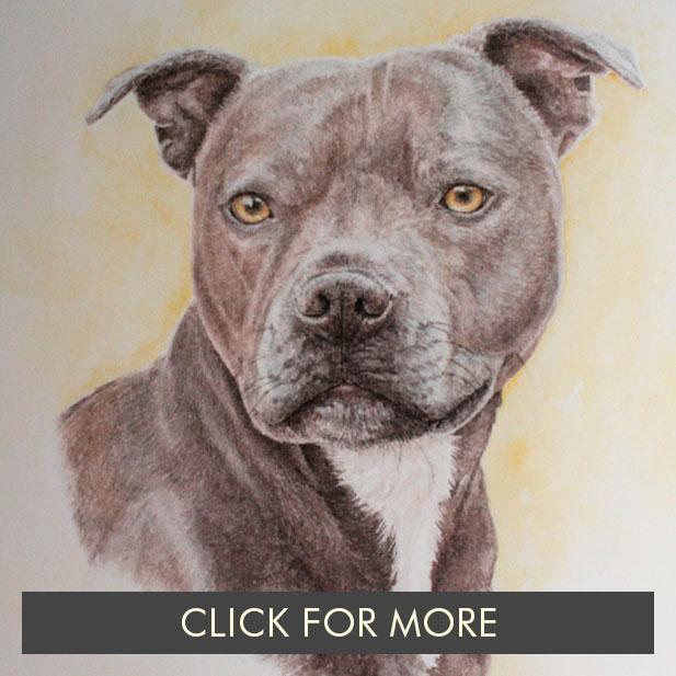 DogsPage02_0010_Indie.JPG.jpg