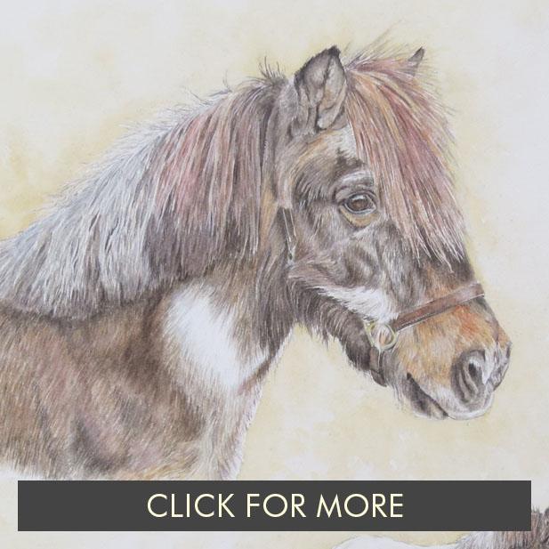 HorsesPage01_0003_Dinky.JPG.jpg
