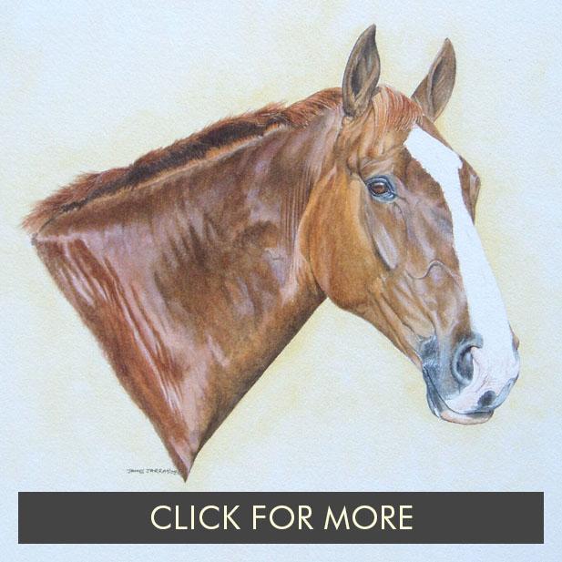 HorsesPage01_0004_Doddle 1.JPG.jpg