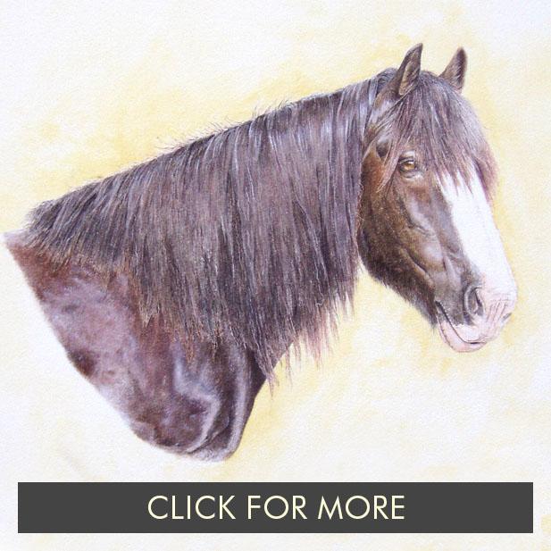 HorsesPage01_0013_JJ.jpg