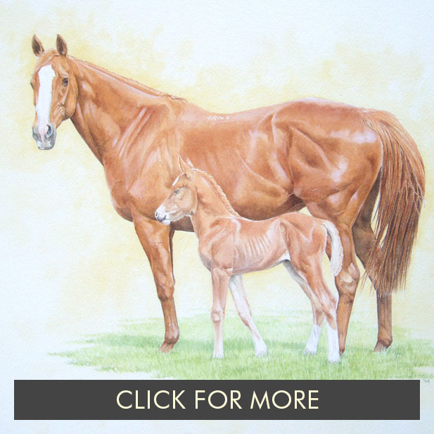 HorsesPage01_0014_Johnson's Mare and Foal.jpg.jpg