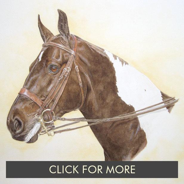 HorsesPage01_0011_Hero.JPG.jpg