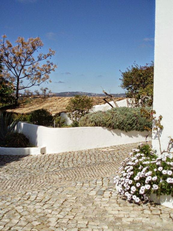 14. View from Casa Mimosa.jpg
