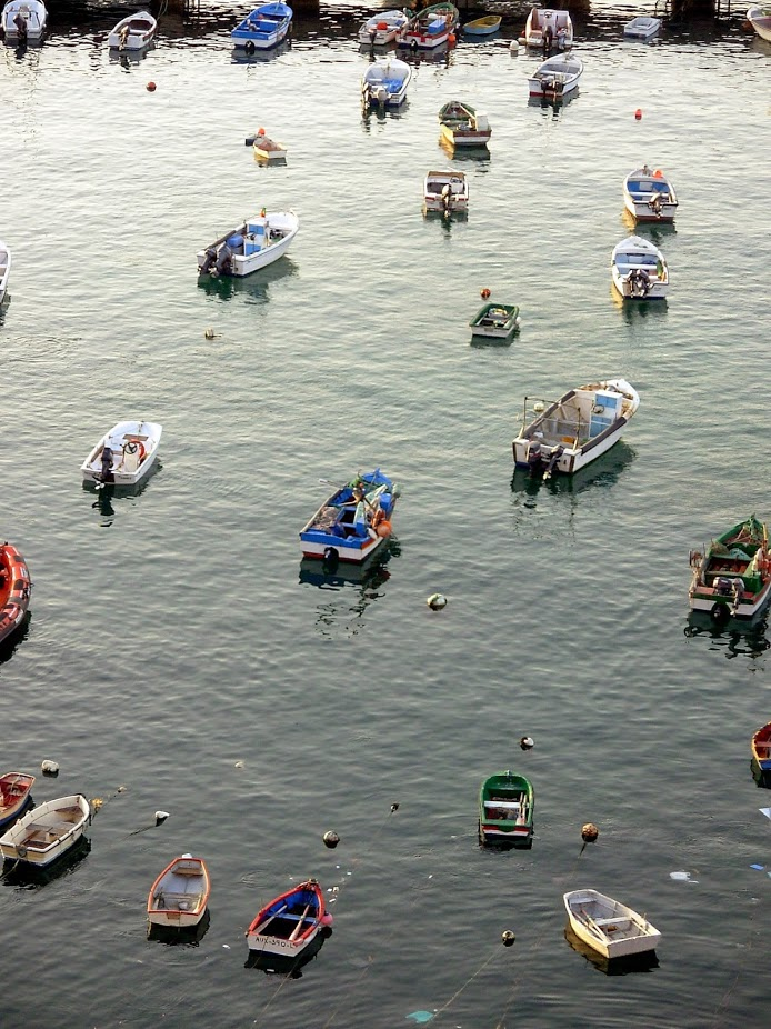 fishing boats.jpg