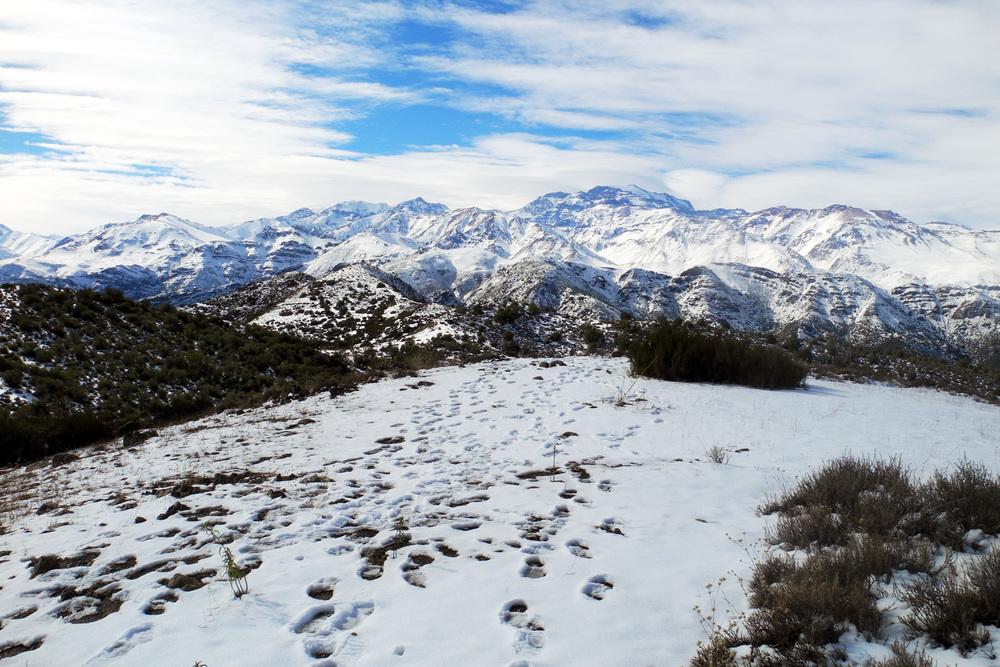 wine-TROTTERS_oenotourisme_wine-tourism-agency_tour_vino_vin_turismo_ARGENTINA_Mendoza_trekking_hiking_horseback-riding_alta-montana_Andes_83WEB-2000px.jpg