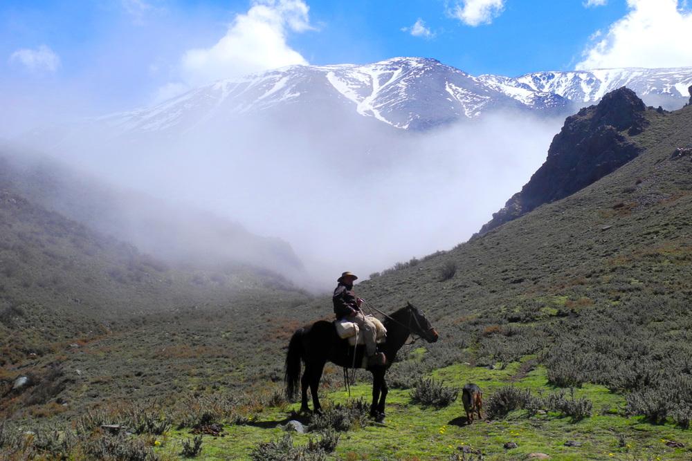 wine-TROTTERS_oenotourisme_wine-tourism-agency_tour_vino_vin_turismo_ARGENTINA_Mendoza_trekking_hiking_horseback-riding_alta-montana_Andes_14_WEB-2000px.jpg